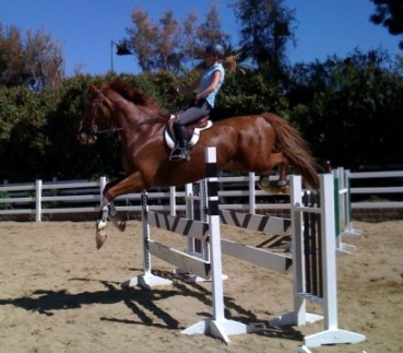 historical equitation